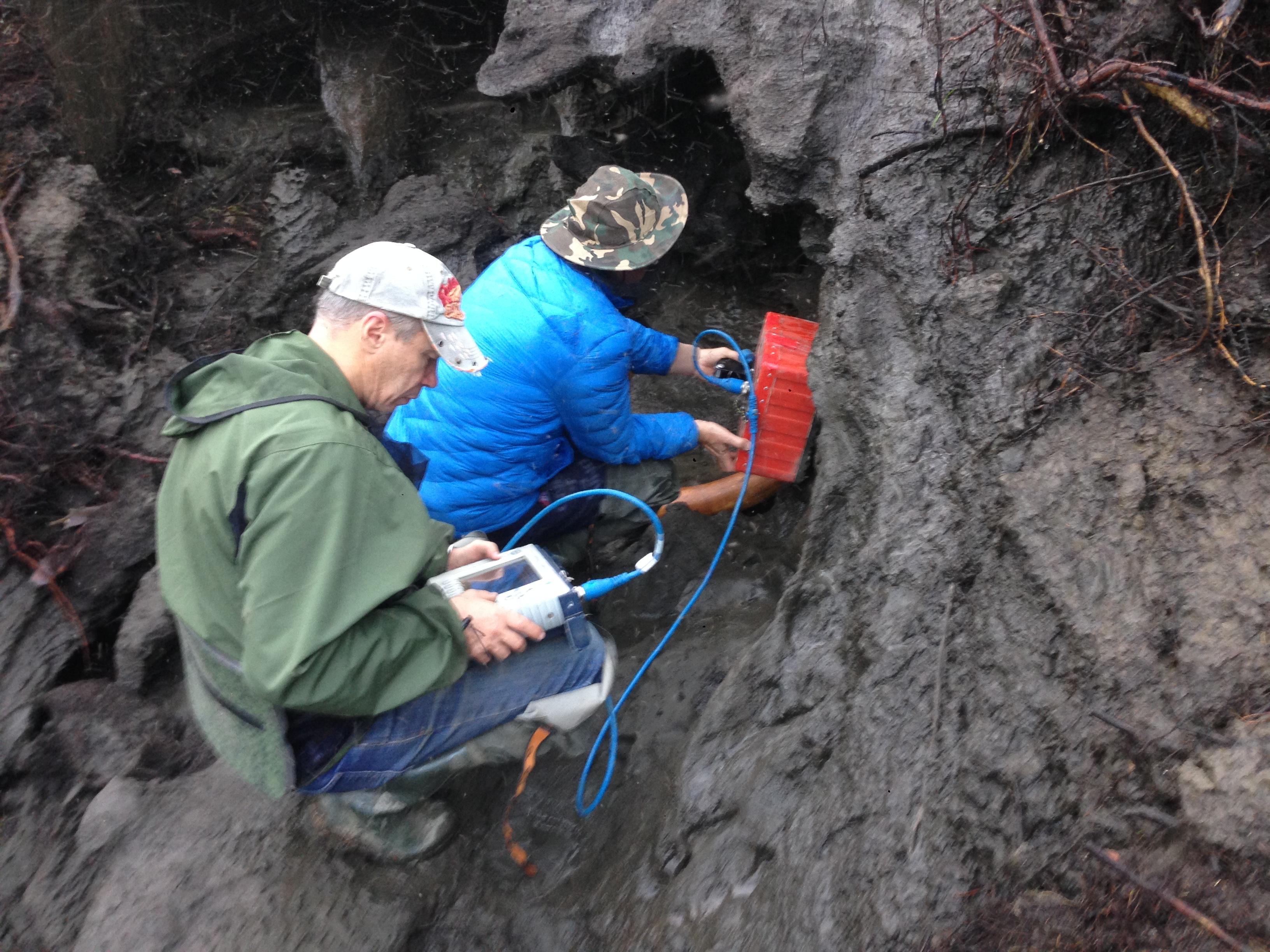 Георадарное сканирование окрестности найденного бивня мамонта